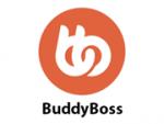 BuddyBoss ads