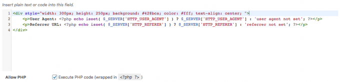 Ad code field with HTML and PHP code to show User Agent and URL referrer.
